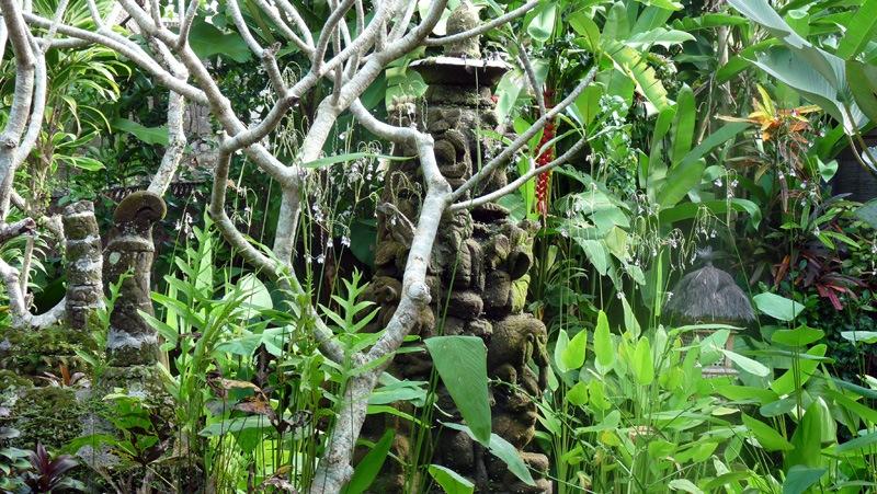 Jardin luxuriant d'Indonésie